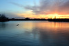 Enjoying Smooth Sailing (NaturalLight) Tags: sunset water reflections ducks chisholmcreekpark wichita kansas