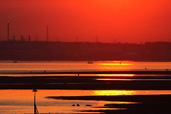 Here Comes the Sun (fstop186) Tags: sunset sun solent fawley oilrefinery lowtide silhouettes