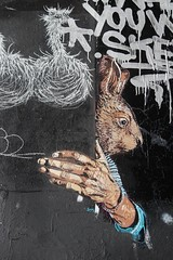 Adey + Matt Thieu_5826 boulevard du Général Jean Simon Paris 13 (meuh1246) Tags: streetart paris adey mattthieu boulevarddugénéraljeansimon lelavomatik paris13 animaux oiseau autruche lapin adelineyvetot
