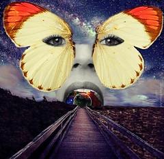 Inner Universe - By SilviAne Moon. (Silviane Moon) Tags: arte borboleta butterfly digitalart digitalcollage digitalpainting futuristic photomanipulation planetas planets planetspace space surreal surrealart surrealism surrealismo surrealistic universe surrealfantasy art silvianemoon silvianemoonart