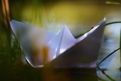 Il était un petit navire (Nathalie_Désirée) Tags: boat little tiny water waterscape childhood memory simple macro closeup f18 canon50mm canoneos600d sweet lovely idea creativity lake