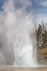 Grand Geyser eruption afternoon of March 9 (large burst) (YellowstoneNPS) Tags: grandgeyser uppergeyserbasin ynp yellowstone yellowstonenationalpark eruption geyser spring