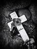 Culloden 9 (Feldore) Tags: inverness clans culloden battle battlefield scotland scottish jacobite war memorial remembrance feldore mchugh em1 olympus 1240mm poppy burial graves