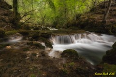 Nacedero del Urederra IV. (Ernest Bech) Tags: navarra nature natura river riu rio bosc bosque forest landscape longexposure llargaexposició llums lights