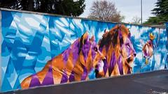 IMGP9544 Lions (Claudio e Lucia Images around the world) Tags: murales graffiti graffito paintedwall murale milano greco viazuretti face streetart art wall walkingthecity pentax pentaxk3ii pentax18135 ritratto animale lion lioness cats feline