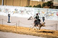 جلالة الملك عبدالله الثاني يحضر جانبا من مسابقة الفارس الدولية الثالثة للرماية بالقوس من ظهر الخيل (Royal Hashemite Court) Tags: king abdullah ii jordan al faris international championship الأردن جلالة الملك عبدالله الثاني مسابقة الفارس الدولية الثالثة