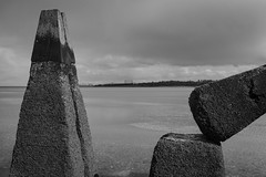 Lauriston and Crammond with Alastair April 2018 (123 of 126) (Philip Gillespie) Tags: crammond lauriston castle keep gardens park green blue red yellow orange colour color mono monochrome black white sea seascape landscape sky clouds drama dramatic walkway path flowers leaves trees april spring defences canon 5dsr people rust metal grafitti man dog petals bluebells dafodils holly blossom pond forth water wet rain sun reflections architecture mirrors gold japan garden sunlight scotland