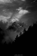 Grandiose et Terrifiant (Frédéric Fossard) Tags: dramaticsky tree landscape montagne mountain cloud orage storm moodyweather brume brouillard fog mist alpes hautesavoie massifdumontblanc glacier mountainpeaks dark dramatique atmosphère mood monochrome noiretblanc blackandwhite contraste lumière ombre light shadow vallée valley cimes