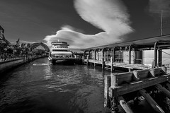 DSC01423 (Damir Govorcin Photography) Tags: circular quay sydney zeiss 1635mm sony a7rii clouds sky ferry boat water harbour bridge architecture wide angle natural light monochrome blackwhite