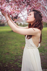 the precious spring (Samir D) Tags: cherryblossom model spring samird 2018 white queenelizabethpark qepark pink vancity vancouver vancitybuzz 604 604now canon canada bc britishcolumbia surreal 35mm14 eos