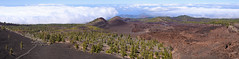 Newborn land (Rico the noob) Tags: 2018 d850 landscape nature 58mmf14 mountains outdoor panorama stones clouds trees horizon ocean tree sea forest water published tenerife dof teneriffa hills sky 58mm