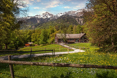 Ballenberg II (Chrisnaton) Tags: switzerland ballenberg landscape nature mountains hiking farmhouse spring trees springmeadow brienz forest idyllicplace