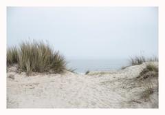Dune (Number Johnny 5) Tags: dunes d750 hazy seashore minimal space empty mundane beach imanoot banal sand minimalism tamron johnpettigrew deserted nikon 2470mm misty documenting seaside