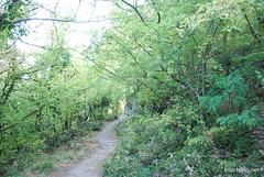 Крим Хрестова гора InterNetri  Ukraine 2011 009
