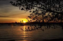 ainda Floripa... (Ruby Ferreira ®) Tags: silhuetas silhouettes bay baía branches ripples sand boats barcos