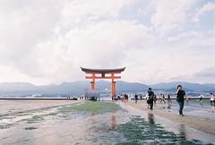 Itsukushima gate - tide out (cactus_chef) Tags: japan 2016 olympus om1 fujifilm fuji film iso200 iso 200 iso400 olympusom1 travel 28mm 50mm 18 f18 f28 om bellhowell 50mmf18 28mmf28 backpacking straightoutofcamera sooc hiroshima miyajimaisland miyajima island tori gate torigate itsukushima tidal walkonwater
