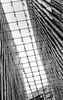 Nova: PLP Architecture ([J Z A] Photography) Tags: plparchitecture delta400 ilford tmaxdev14 yashica35cc 35mm analog novavictoria bw jzaphotography monochrome attreecouk filmisnotdead grainisgood ishootfilm jzaphotographycouk
