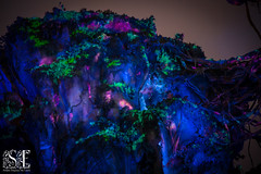 Inside Pandora at Night (Laura K Bellamy) Tags: disney disneyworld pandora avatar night theme park