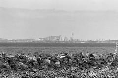 Gulf harbour to shimmer Auckland city (Julies Camera) Tags: filmphotograph 35mmfilm filmphotographer newzealand