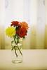 Flowers (Danny Chiam) Tags: flowers color roses stilllife fineart canonftb kodak gold200 analog filmphotography