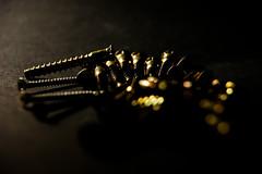 Low Key Screws (Jose Rahona) Tags: tornillos screws lowkey macromondays light darkness macros