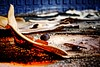 (CELURBEX) Tags: vaucluse ancien abandonado abbandonato abandoned abandonné old vieux explorar esplorare explore wasteland friche oublié urbex exploration urban graffity graff tag water eau industrie production lumix carton papier macro