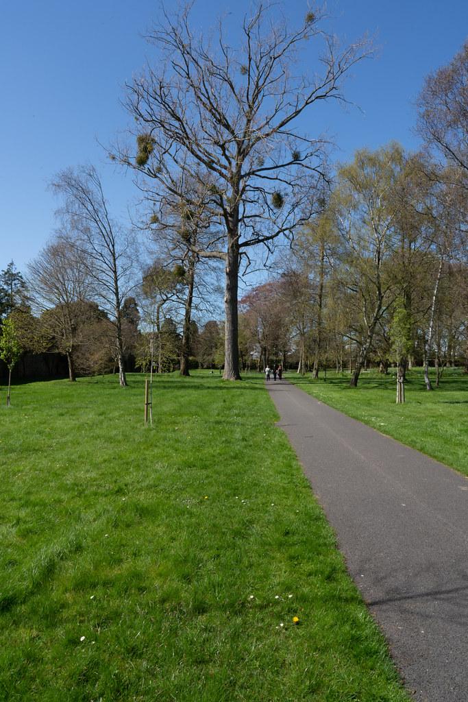 VISIT TO THE NATIONAL BOTANICAL GARDENS [GLASNEVIN DUBLIN]-138598