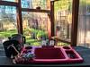 Kitchen Sink in Garden Greenhouse (ShebleyCL) Tags: sink yard plant summer spring red garden greenhouse