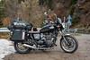Bonnie (Amaia Uriarte & Marvin Ancian) Tags: bonnieandklyde bonnieklyde adventure capsingapour motorbike motorcycle italy italie triumphbonneville bonnie