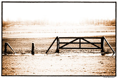 Silence // Stille (Zoom58.9) Tags: monochrome bildbearbeitung ruhe weide gatter imageediting silence pasture gate canon wood holz sepia