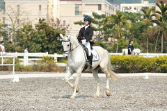 IMG_5028M 馬上英姿 (陳炯垣) Tags: sport competition horse