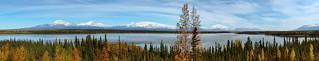 Willow Lake Vista