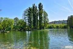 Parcul Alexandru Ioan Cuza (IOR) (IMOBE.ro) Tags: ior titan parcul alexandru ioan cuza sector 3 bucuresti nikond5600 tokina 1120