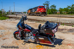 2011 Harley-Davidson CVO Screaming Eagle Ultra Classic Electra Glide (M.J. Scanlon) Tags: business c449w cn cn2682 cnjunction cnmemphissub canadiannational canon capture cargo color commerce digital emd sd75m eos engine freight ge haul horsepower image impression landscape locomotive logistics mjscanlonphotography memphis merchandise mojo move mover moving outdoor outdoors prlx236 perspective photo photograph photographer photography picture rjy30 rail railfan railfanning railroad railroader railway real santafe scanlon sky super tennessee track train trains transfer transport transportation tree view wow ©mjscanlon ©mjscanlonphotography harleydavidson ultraclassic cvo screamingeagle motorcycle hog