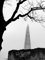 And another one.  👀   #graphic #lines #cityscape #shard #street #urban #architecture #skyscraper #architecturelovers #city #reflection #thisislondon #art #streetphotography_bw #nikon #bnw #Flickr_streetview #theshard #blackandwhite #tree #noiretblanc (jophipps1) Tags: streetphotographybw noiretblanc city thisislondon flickrstreetview trees nikon blackandwhite fortheloveofbranches street cityscape bnwcaptures shard architecturelovers lines graphic architecture art theshard amateursbnw reflection tree skyscraper bnw flickr urban silhouette london bnwofourworld