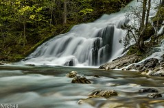 A contre courant (paul.porral) Tags: water waterfall wasserfall landscape waterscape wasser cascade nature natur flickr ngc poselongue longexposure landschaft wet trees river
