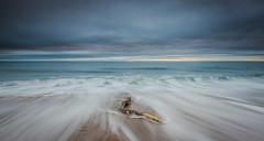 Driftwood (ianbrodie1) Tags: driftwood cresswell beach sand sunrise coast coastline northumberland northeast sea seascape ocean leefilters sky clouds water