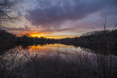 Sunset over Wing Lake (Mercenaryhawk) Tags: canon eos 5ds 5dsr 14mm 24 rokinon sp wide angle landscape wing lake minnetonka minnesota mn sunset clouds spring water cold reflections trees horizon branches orange evening