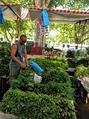sempre verde (luyunes) Tags: verde mercado market streetmarket feiralivre feiradaglória fair mobilephotographie mobilephoto motozplay luciayunes streetphoto streetshot streetphotography streetscene streetlife