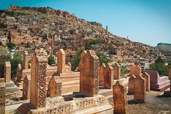 Asri cemetery, Mardin (sdhaddow) Tags: mardin turkey cemetery mesopotamia anatolia tombstone stone