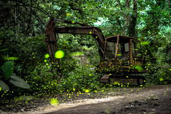 Firefly Excavator (TakumiMono) Tags: swag likeforlike like4like yolo love instagood me tbt follow cute photooftheday followme like tagsforlikes happy beautiful girl picoftheday selfie fun instadaily smile summer friends igers fashion instalike food amazing tflers bestoftheday follow4follow instamood style wcw allshots cool eyes funny nice look party art sky shoutout colorful day photo best sweet red blue good music nikon nikonworld nikontop nikonasia taipei taiwan formosa landscape vscotaiwan iseetaiwan exploretaiwan discovertaiwan amazingtaiwan imeettaiwan