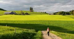 On the road (blogspfastatt (+4.000.000 views)) Tags: blogspfastatt j schwarzwald hiking randonnée green vert rouge red