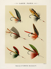 Lake Flies from Favorite Flies and Their Histories by Mary Orvis Marbury. Digitally enhanced from our own original 1892 Edition. (Free Public Domain Illustrations by rawpixel) Tags: americanartificialflies americanflypattern antique artificial artificialfly bait bug catch collection design drawing faded favoriteflies fishing fishingflies flies flshing fly flyfishing group handdrawn illustration insect lakeflies marbury maryorvis maryorvismarbury old pattern poster publicdomain sepia set sketch vibrant vintage