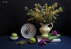 The Art of Living (Esther Spektor - Thanks for 12+millions views..) Tags: stilllife naturemorte bodegon naturezamorta stilleben naturamorta composition creativephotography art spring tabletop flowers bouquet pitcher book plate food fruit apple bowl decorative bird ceramics pattern ambientlight white yellow green magenta blue black estherspektor canon