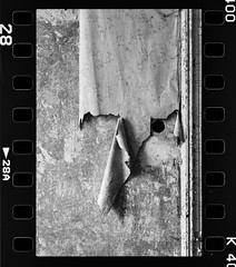 (halagabor) Tags: bnw blackandwhite monochrome urban urbex urbanexploration urbanexploring lost lostplaces decay derelict devastation nikon nikkor kentmere kentmere400 film filmisnotdead filmcamera ishotfilm analog analogcamera manualfocus wall wallpaper old forgotten hungary exploration exploring explorer uncut frame framing