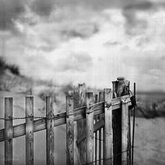 beach fence (jd weiss) Tags: hasselblad500cm zeissplanar8028