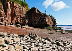 Vertical and horizontal rocks (ARKNTINA) Tags: newbrunswick canada northamerica nb17 random6 bayoffundy bay fundy randomnature naturallandscape nature hopewellrocks park beach seabed lowtide rocks cliff cove