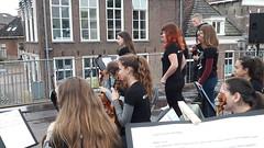 Festival holanda 18 (261)
