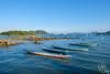 SUNDAY SAI KUNG (YAN.0923) Tags: hongkong hong kong holiday summer hot dog doggie cat dragon boat sai kung blue sky beautiful