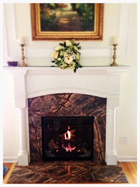 Mendota VF-41 Direct Vent Gas Fireplace. Chattanooga, Tn.